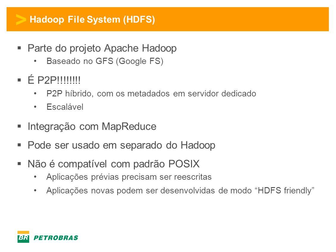 Hadoop File System (HDFS)