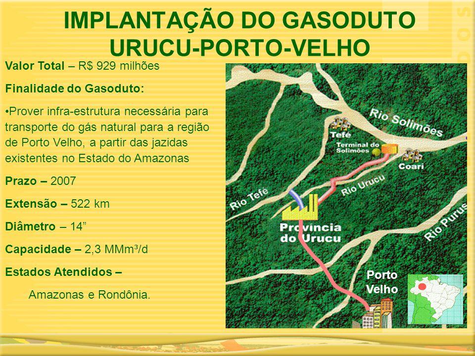 IMPLANTAÇÃO DO GASODUTO URUCU-PORTO-VELHO