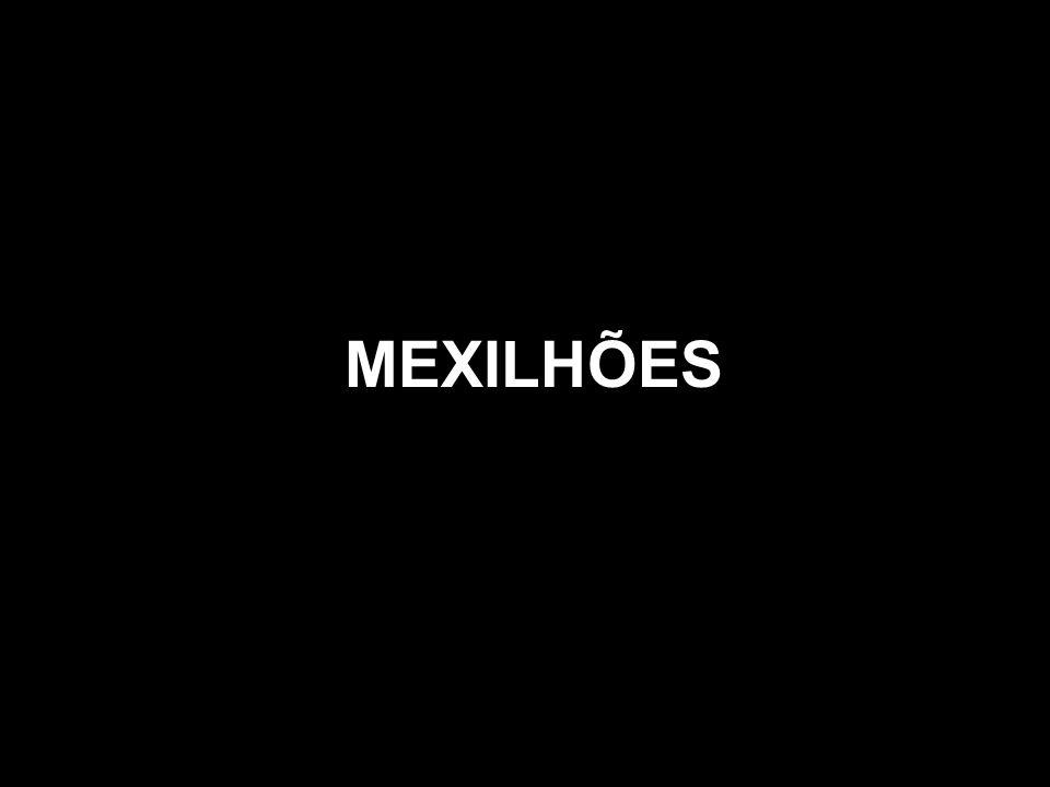MEXILHÕES