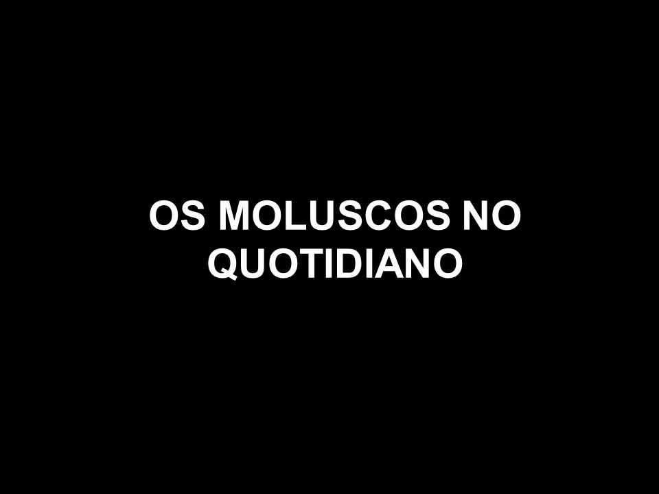 OS MOLUSCOS NO QUOTIDIANO