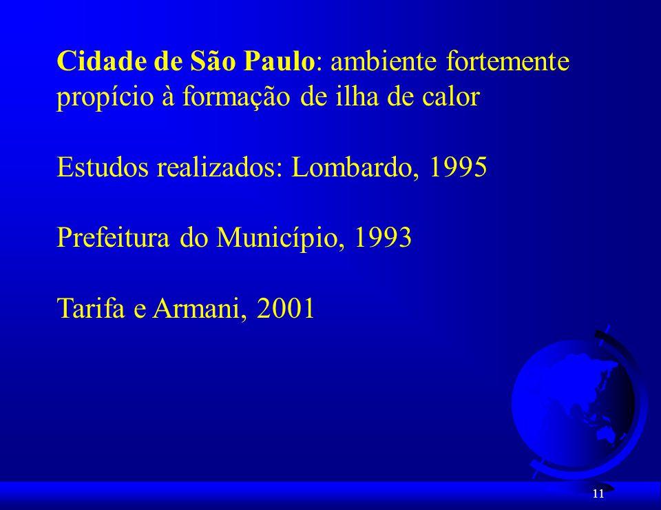 Cidade de São Paulo: ambiente fortemente
