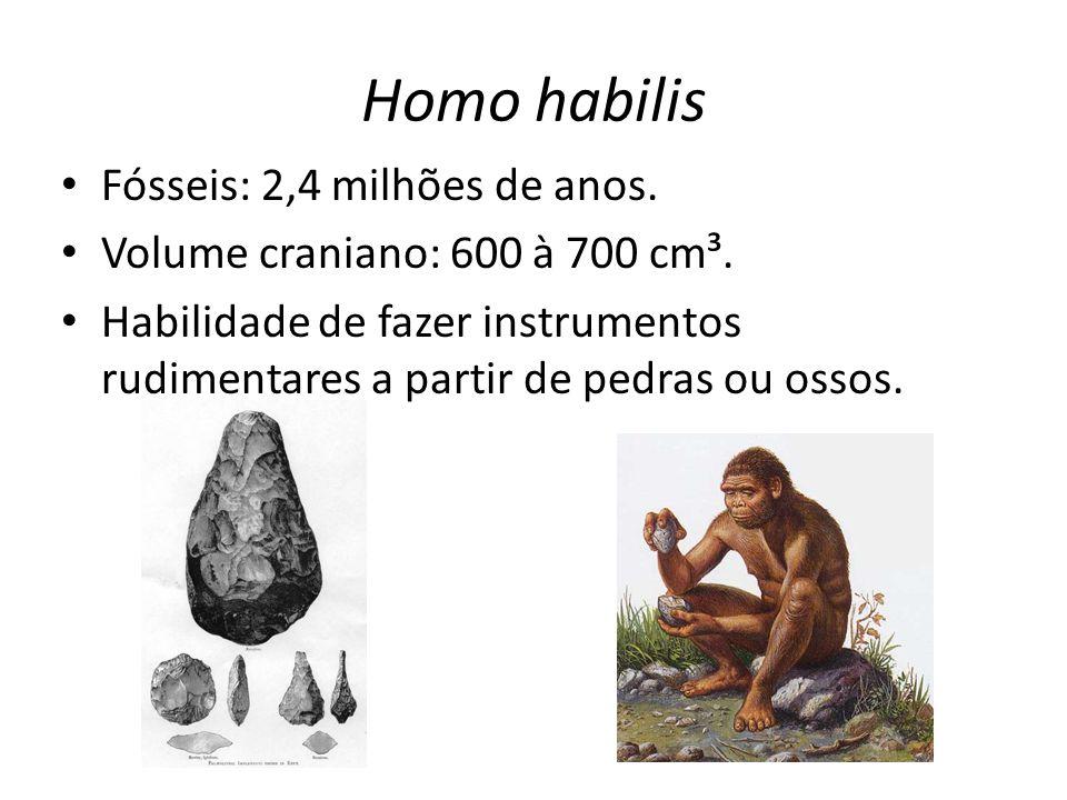 Homo habilis Fósseis: 2,4 milhões de anos.