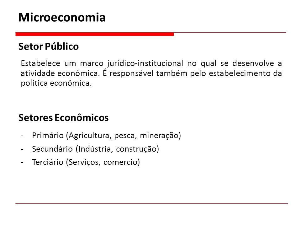 Microeconomia Setor Público Setores Econômicos