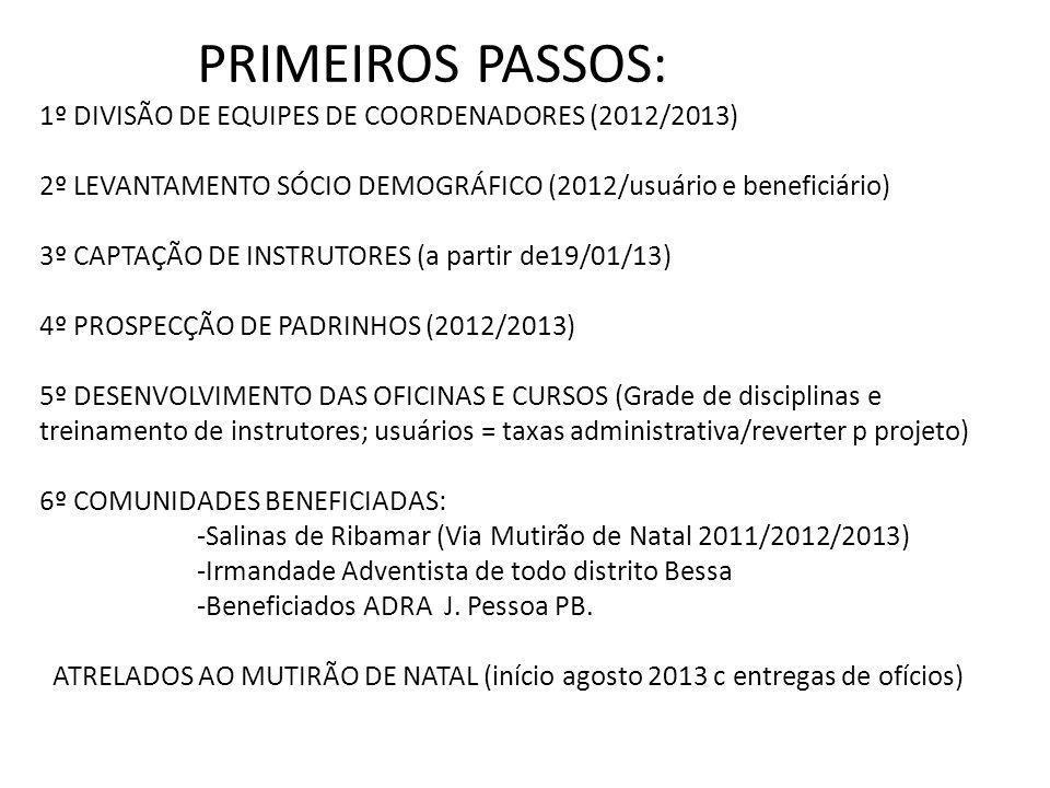 PRIMEIROS PASSOS: 1º DIVISÃO DE EQUIPES DE COORDENADORES (2012/2013)