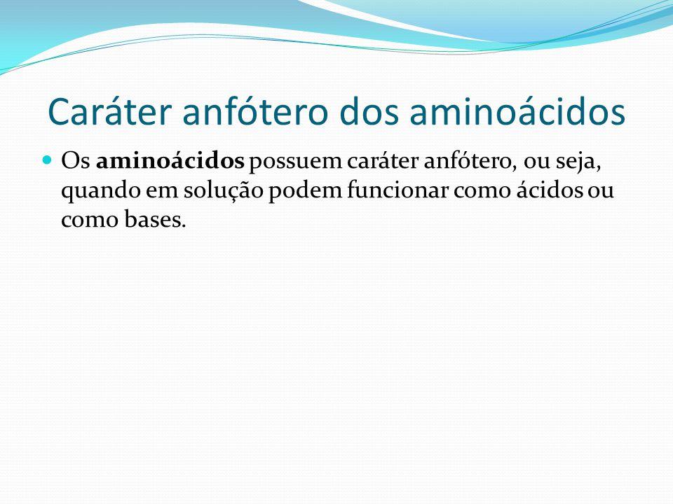 Caráter anfótero dos aminoácidos
