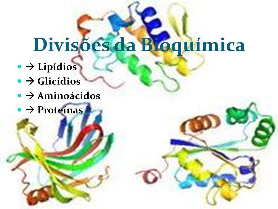 Divisões da Bioquímica