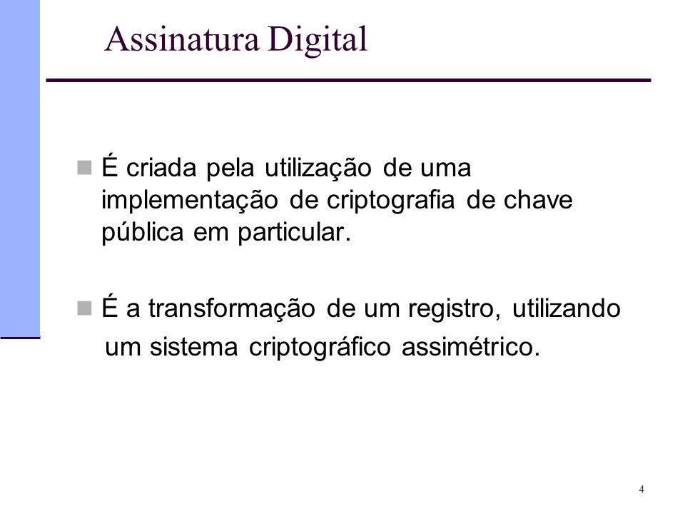 Assinatura Digital É criada pela utilização de uma implementação de criptografia de chave pública em particular.