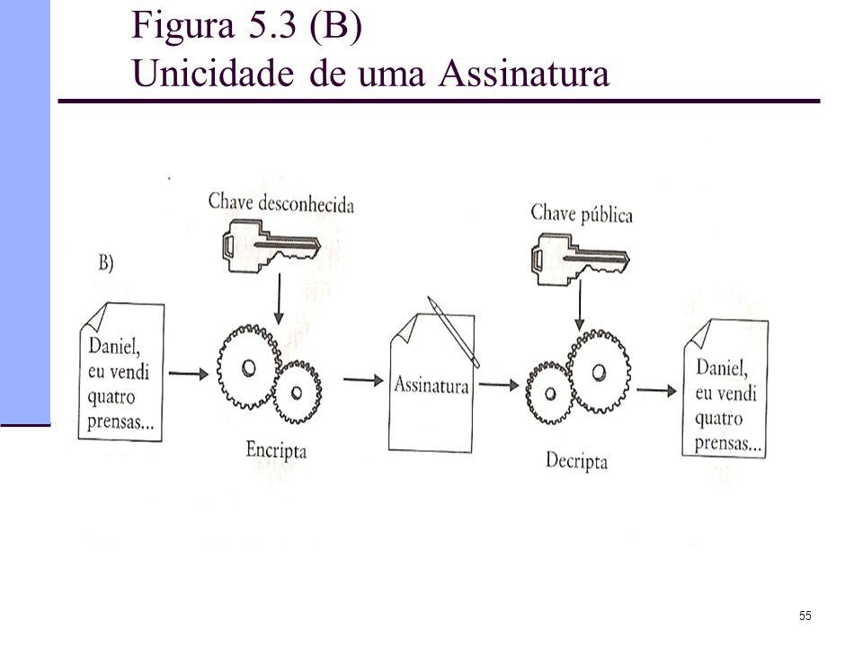 Figura 5.3 (B) Unicidade de uma Assinatura