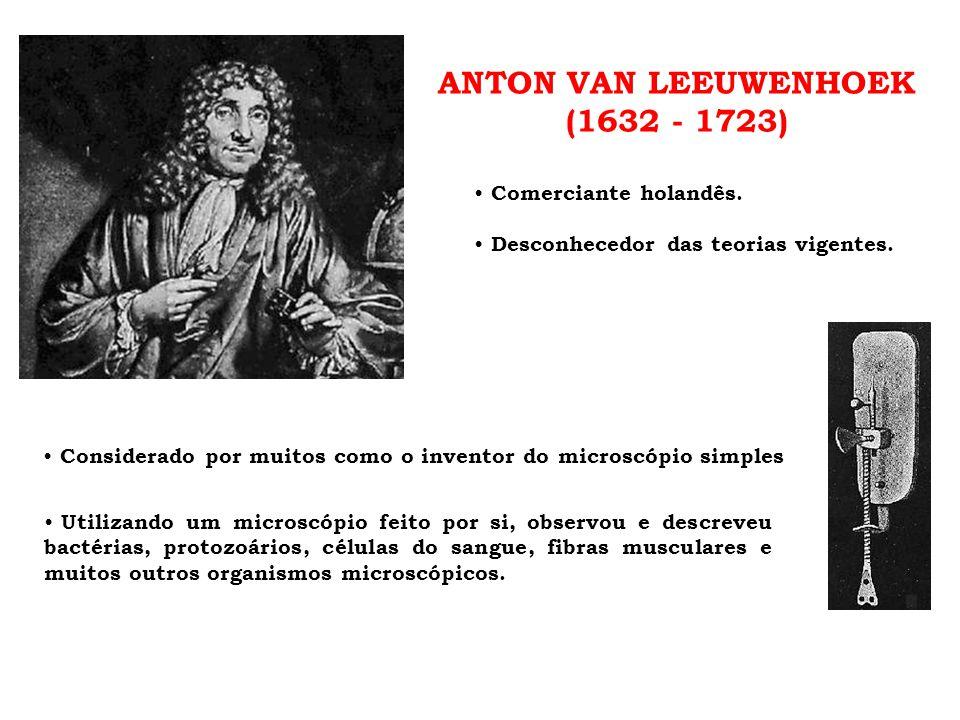 ANTON VAN LEEUWENHOEK (1632 - 1723)