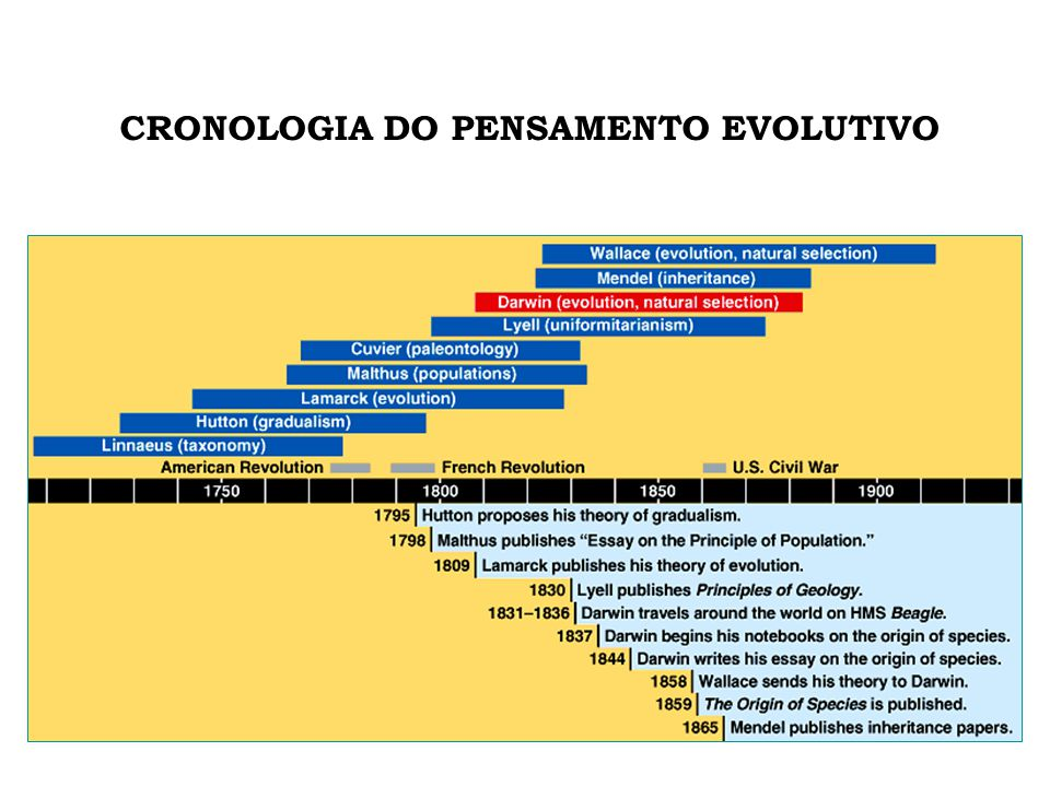 CRONOLOGIA DO PENSAMENTO EVOLUTIVO
