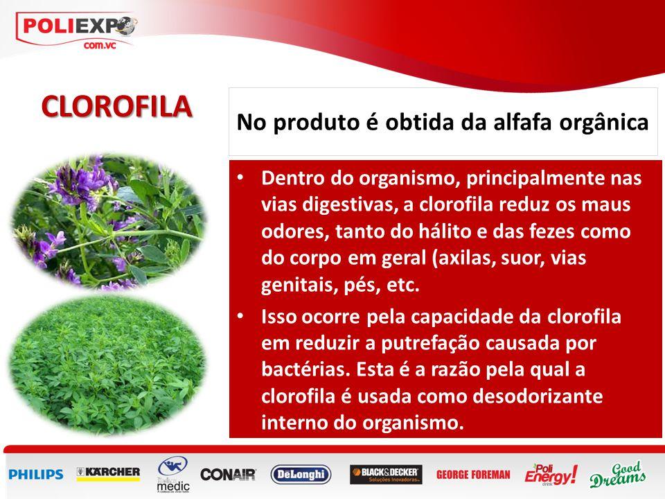 No produto é obtida da alfafa orgânica