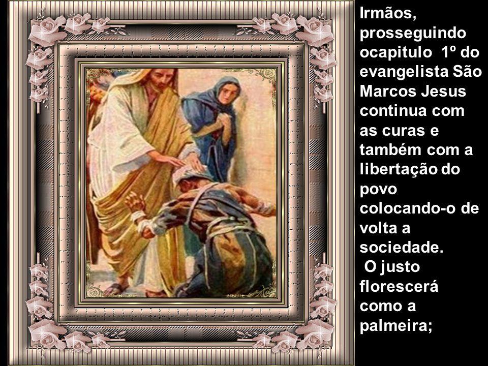Irmãos, prosseguindo ocapitulo 1º do evangelista São Marcos Jesus continua com as curas e também com a libertação do povo colocando-o de volta a sociedade.