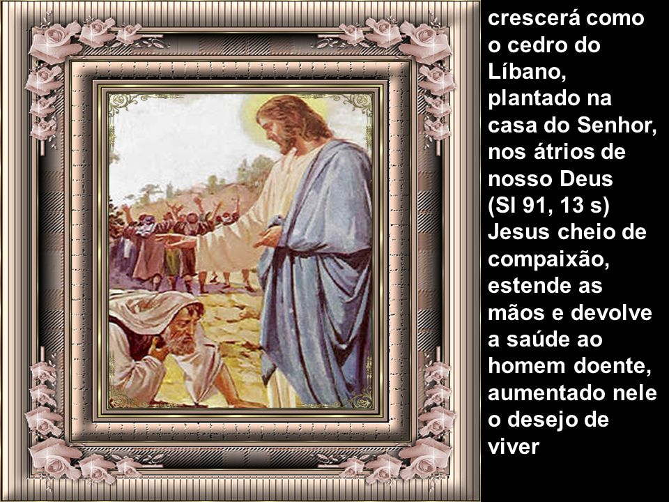 crescerá como o cedro do Líbano, plantado na casa do Senhor, nos átrios de nosso Deus