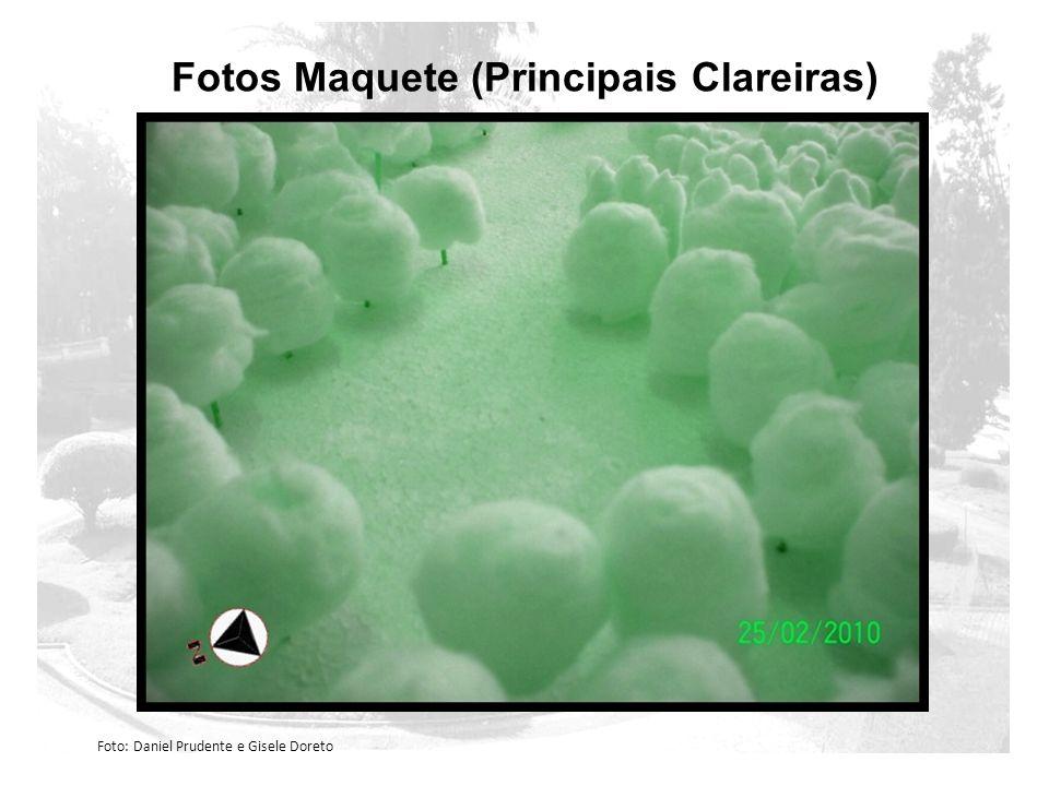 Fotos Maquete (Principais Clareiras)