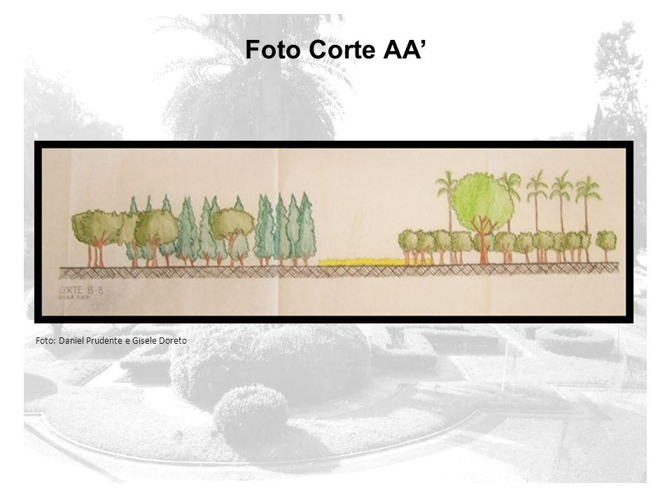 Foto Corte AA' Foto: Daniel Prudente e Gisele Doreto