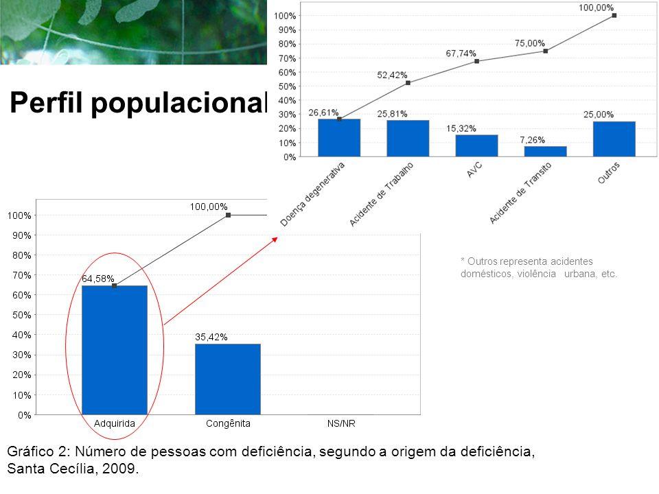 Perfil populacional * Outros representa acidentes domésticos, violência urbana, etc.