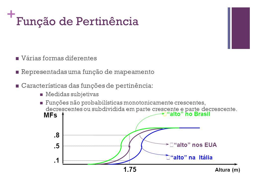 Função de Pertinência Várias formas diferentes