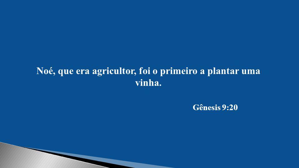 Noé, que era agricultor, foi o primeiro a plantar uma vinha.