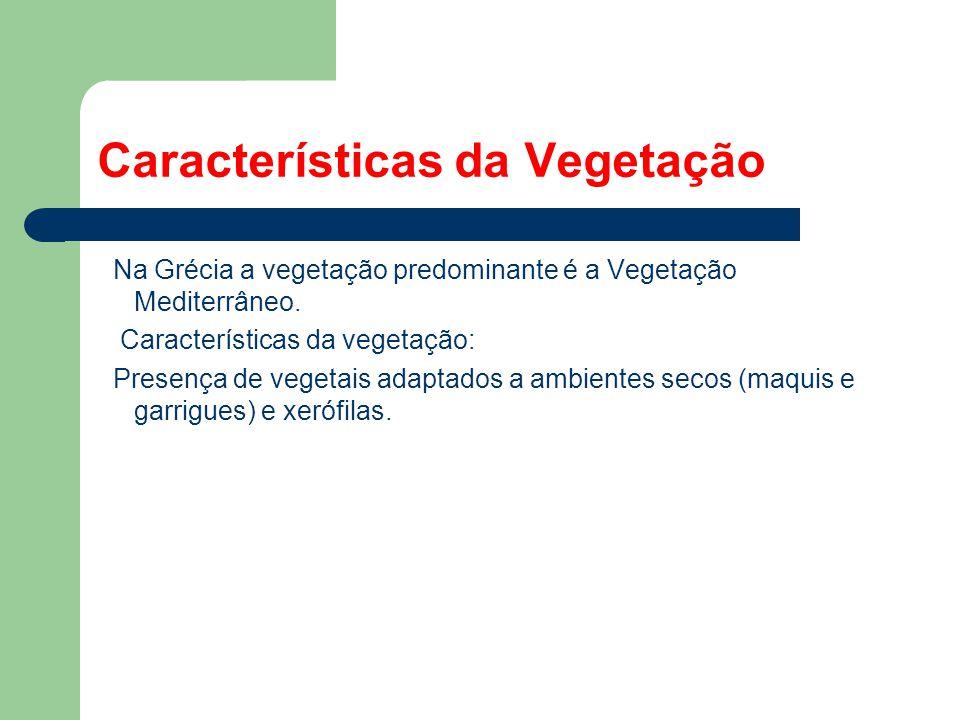 Características da Vegetação