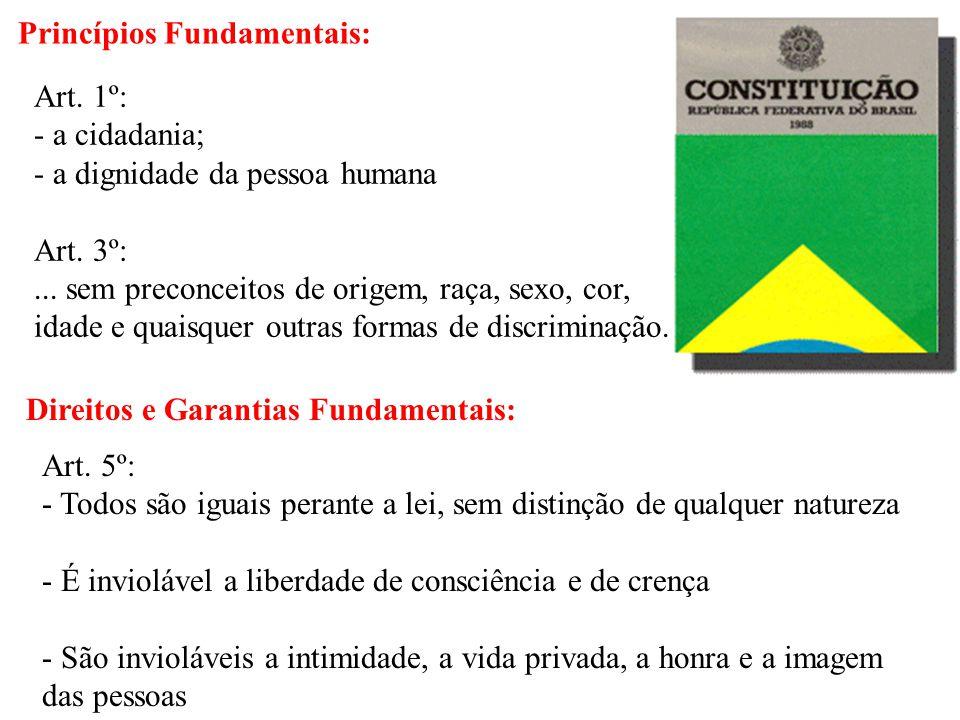 Princípios Fundamentais: