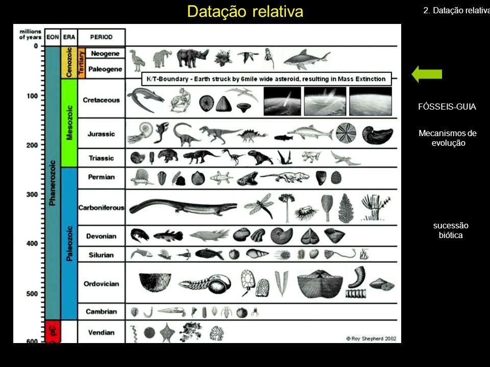 Datação relativa 2. Datação relativa FÓSSEIS-GUIA Mecanismos de