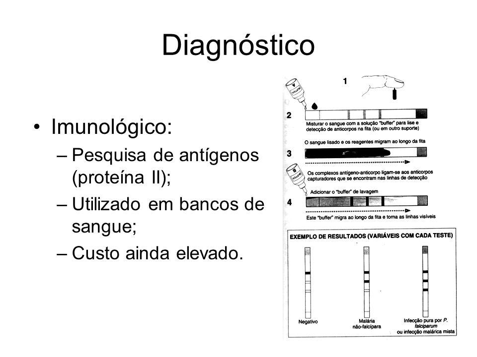 Diagnóstico Imunológico: Pesquisa de antígenos (proteína II);