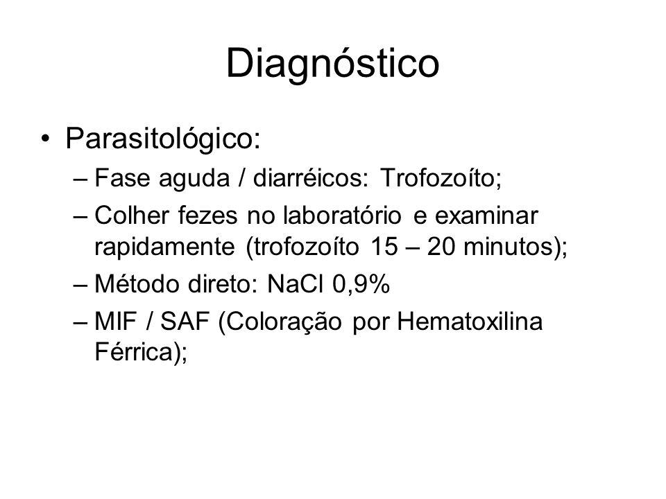 Diagnóstico Parasitológico: Fase aguda / diarréicos: Trofozoíto;