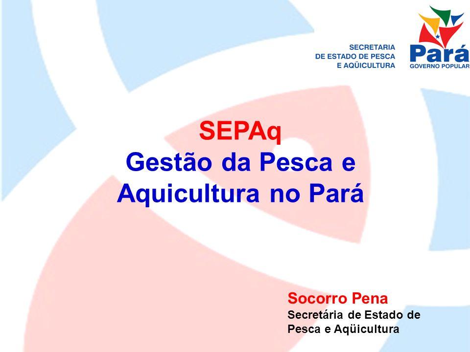 Gestão da Pesca e Aquicultura no Pará