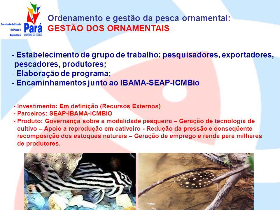 Ordenamento e gestão da pesca ornamental: GESTÃO DOS ORNAMENTAIS
