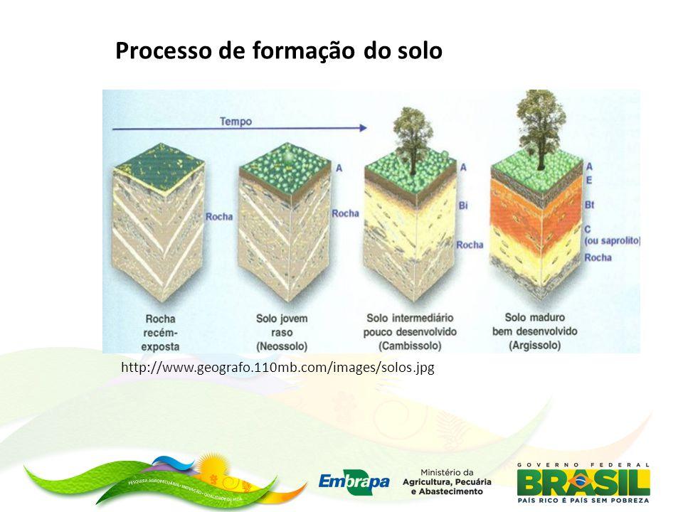 Processo de formação do solo