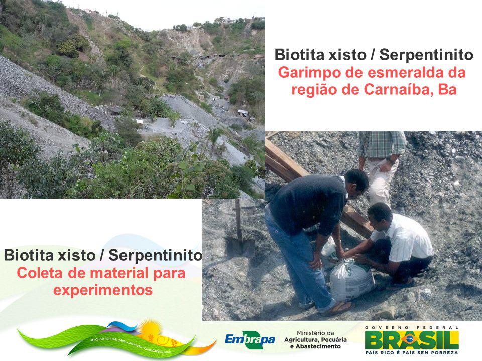 Biotita xisto / Serpentinito Biotita xisto / Serpentinito
