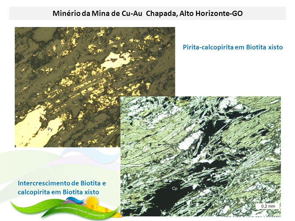 Minério da Mina de Cu-Au Chapada, Alto Horizonte-GO