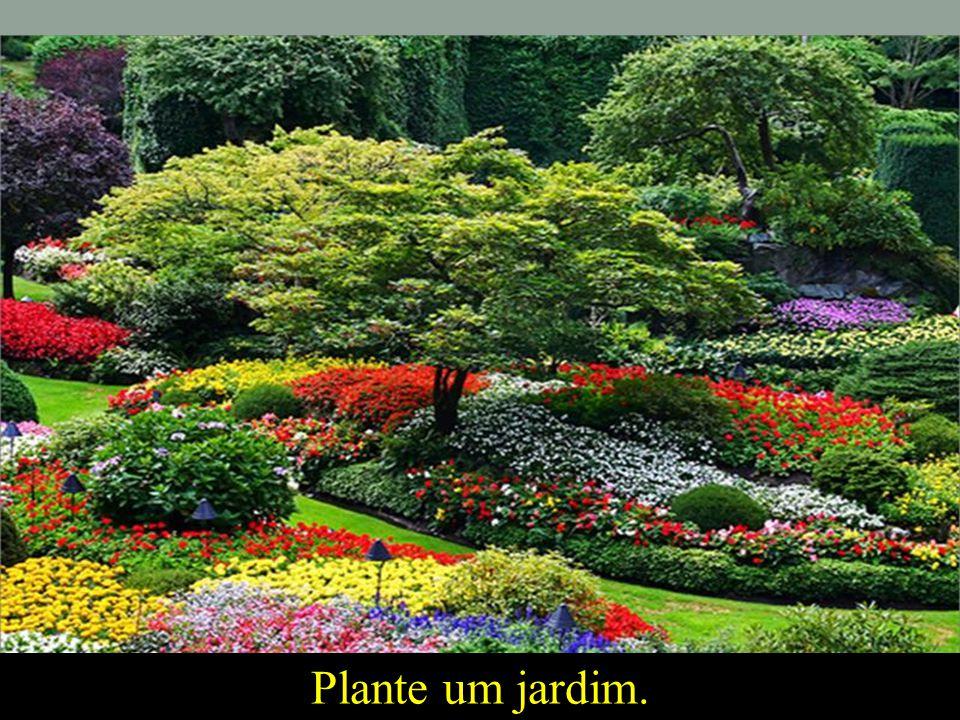 Plante um jardim.