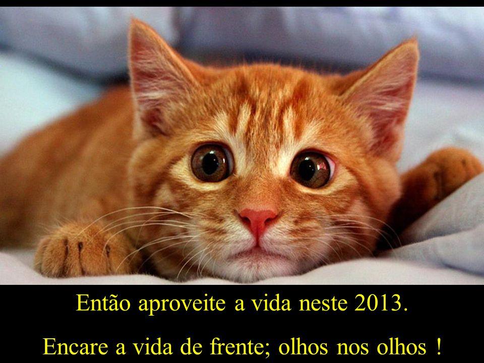 Então aproveite a vida neste 2013.