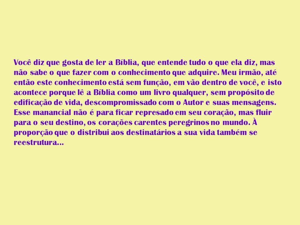 Você diz que gosta de ler a Bíblia, que entende tudo o que ela diz, mas não sabe o que fazer com o conhecimento que adquire.