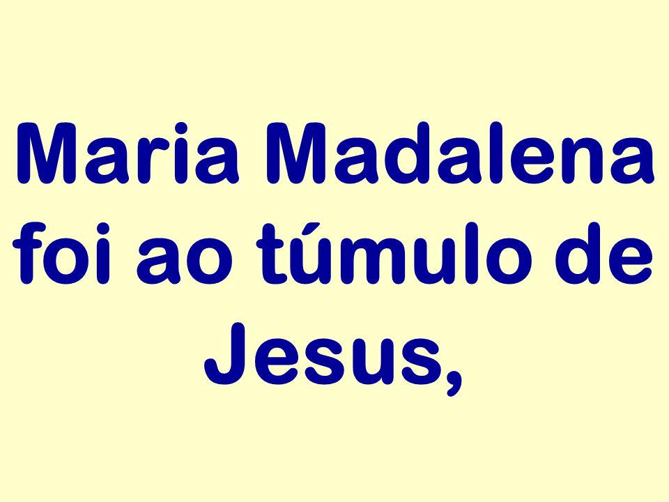 Maria Madalena foi ao túmulo de Jesus,