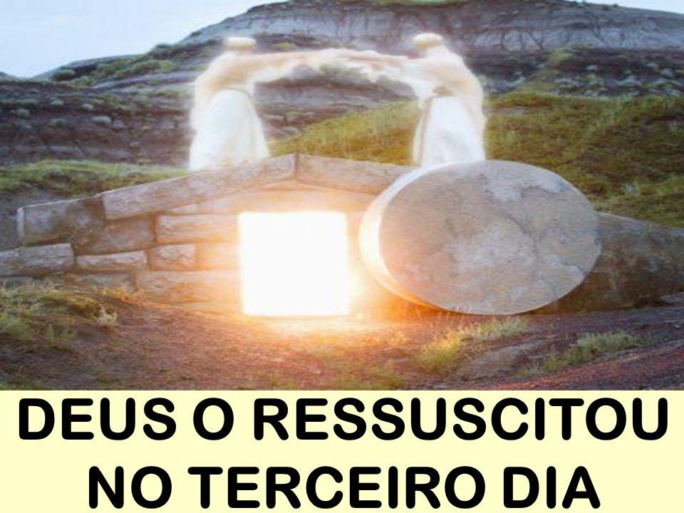 DEUS O RESSUSCITOU NO TERCEIRO DIA