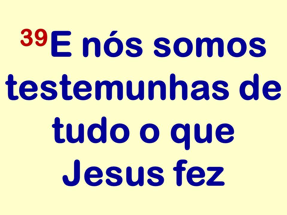 39E nós somos testemunhas de tudo o que Jesus fez