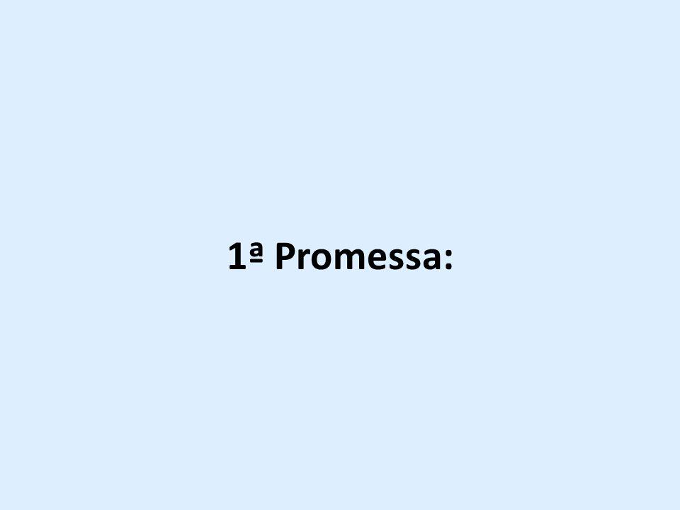 1ª Promessa:
