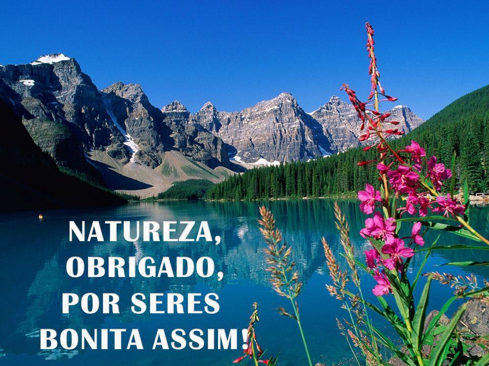NATUREZA, OBRIGADO, POR SERES BONITA ASSIM!