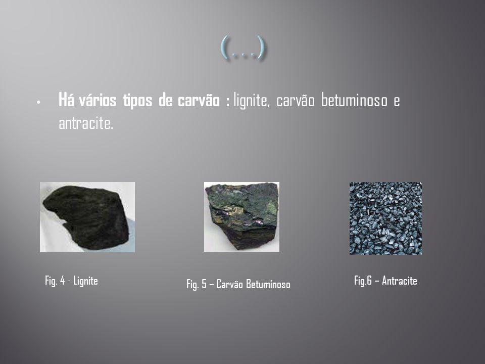 (…) Há vários tipos de carvão : lignite, carvão betuminoso e antracite. Fig. 4 - Lignite. Fig.6 – Antracite.