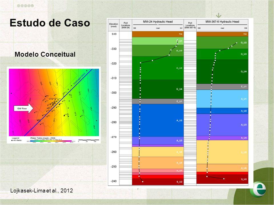 Estudo de Caso Modelo Conceitual Lojkasek-Lima et al., 2012