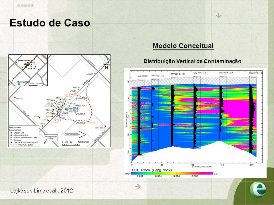 Estudo de Caso Modelo Conceitual Distribuição Vertical da Contaminação