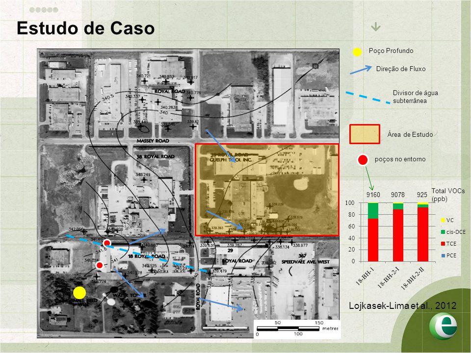 Estudo de Caso Lojkasek-Lima et al., 2012 Poço Profundo