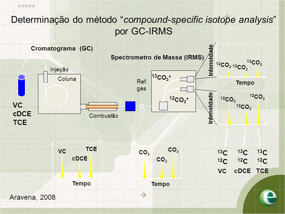 Determinação do método compound-specific isotope analysis por GC-IRMS