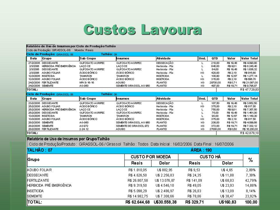 Custos Lavoura www.brazsoft.com.br (65) 3023 9013
