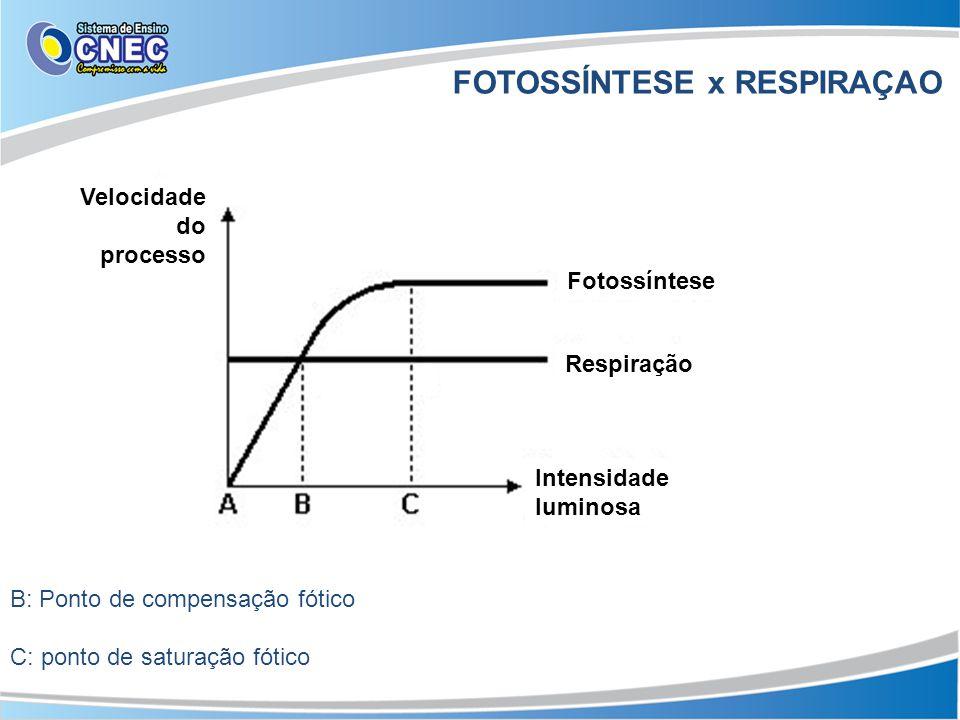FOTOSSÍNTESE x RESPIRAÇAO