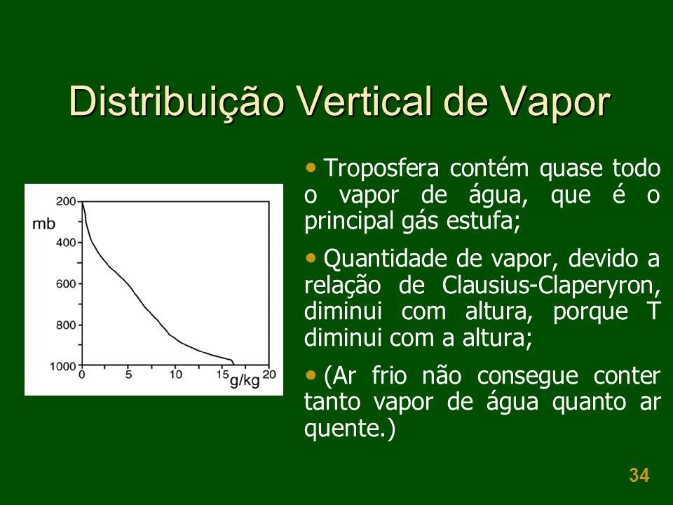 Distribuição Vertical de Vapor