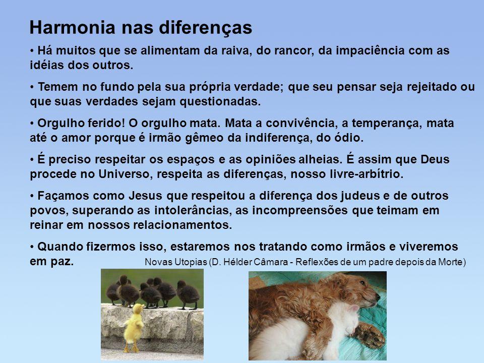 Harmonia nas diferenças