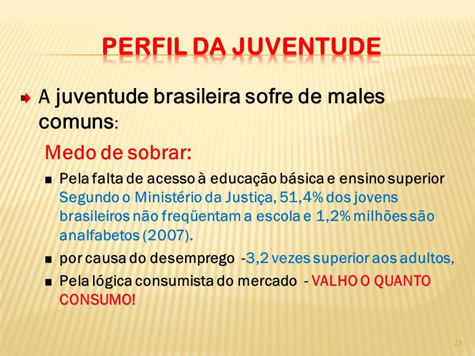 PERFIL DA JUVENTUDE A juventude brasileira sofre de males comuns: